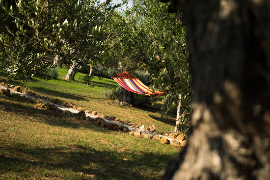 Cooking-Olive-Harvesting-Messinia